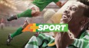 A+ Sport, the new African channel fully dedicated to sports